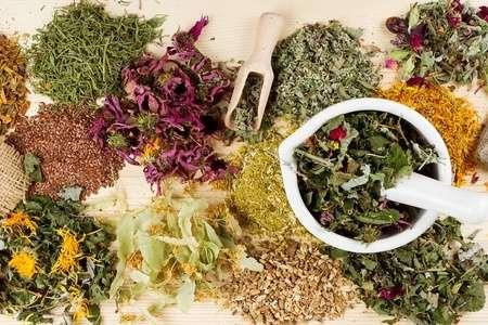 Какие травы помогут избавиться от аденомы простаты