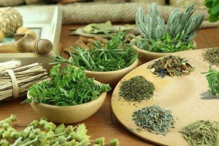 мочегонные травы от простатита