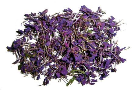 Засушенные цветы Иван-чая
