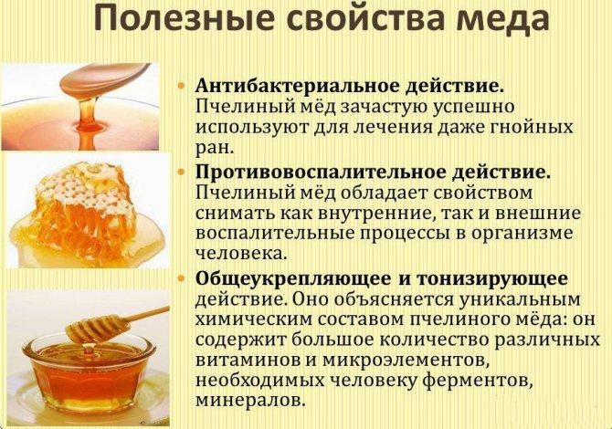 Польза меда при простатите