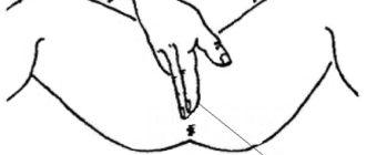 Внешний (наружный) массаж простаты