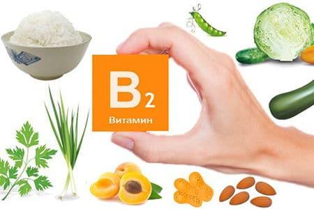 табличка в руке с надписью Витамин B2